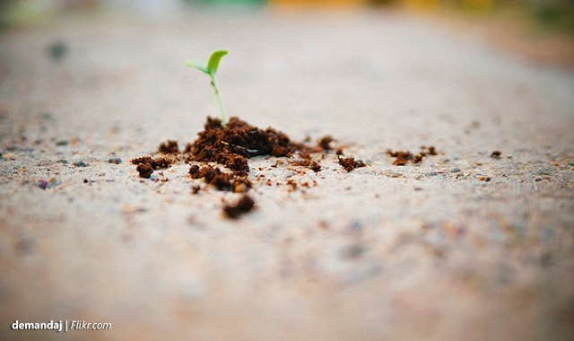 802-get-client-grow-business