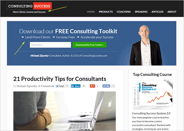 Consulting-Success-Michael-Zipursky