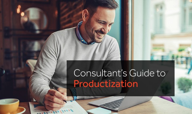 Consultant's Guide to Productization: How To Productize Consulting Services