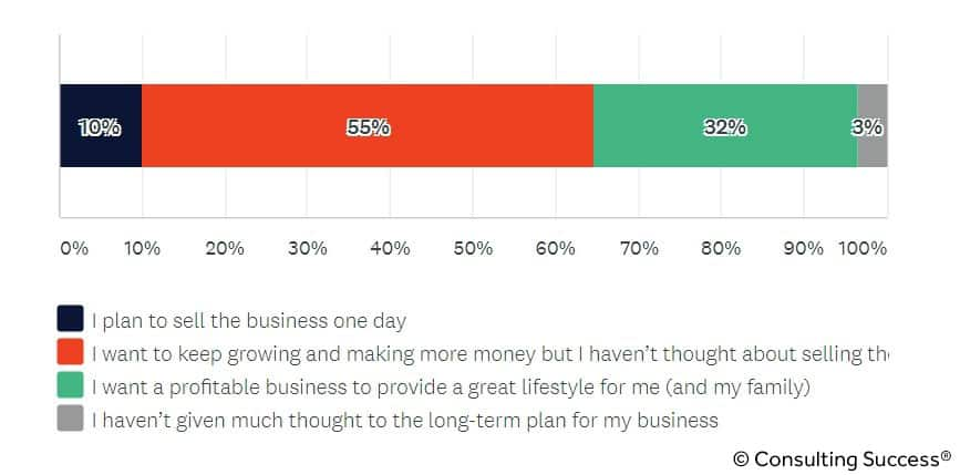 long term goals for consulting business owners statistic